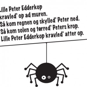 lillepeteredderkop2