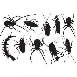 insekter2