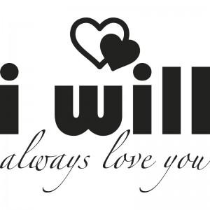 iwill2