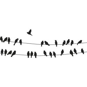 fuglepåkabel2